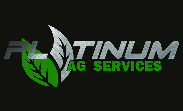 uncle-d-s-airbrushing-business-designs-platinum