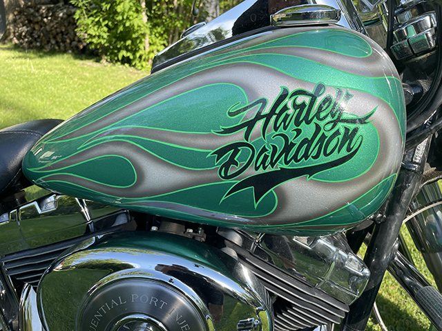 uncle-d-s-airbrushing-motorcycles-skulls-and-flames-green-2